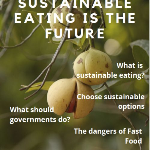 thumbnailimage of Report: Sustainable Food