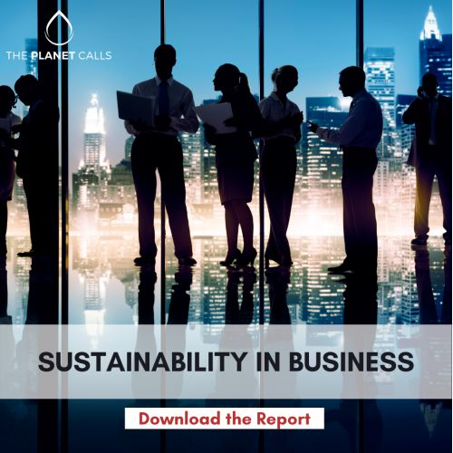 thumbnailimage of Report: Sustainability in Business