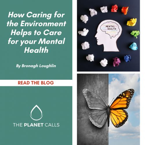 thumbnailimage of Blog:  How Caring for the Environment Helps to Care for your Mental Health By Bronagh Loughlin