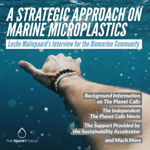 thumbnailimage of A Strategic Approach on Marine Microplastics