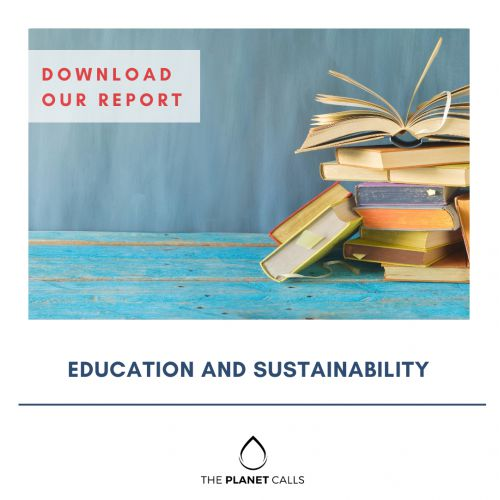 thumbnailimage of Report: Education and Sustainability