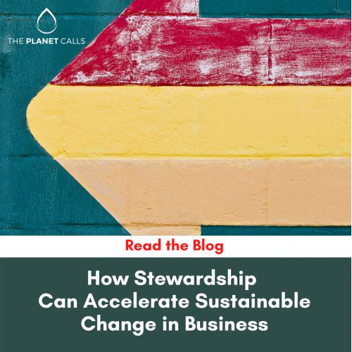 thumbnailimage of Blog: How Stewardship Can Accelerate Sustainable Change in Business