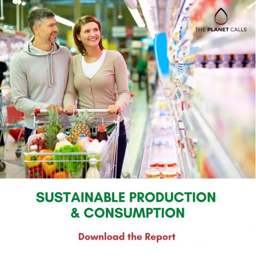 thumbnailimage of Report: Sustainable Production & Consumption